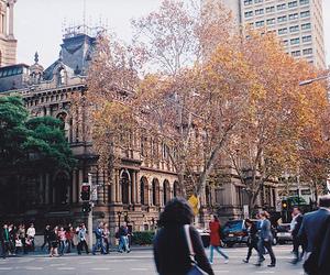 city, tree, and tumblr image