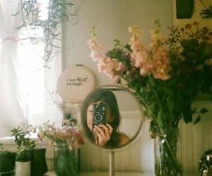 mirror, photography, and plants image