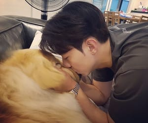 bassist, dog love, and boice image