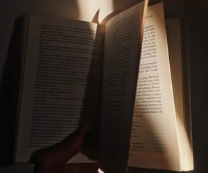 book, books, and light image
