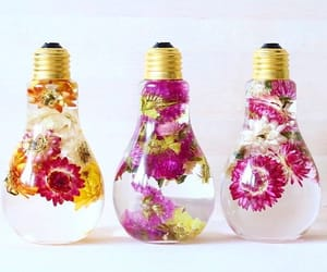 flowers, bulb, and decor image
