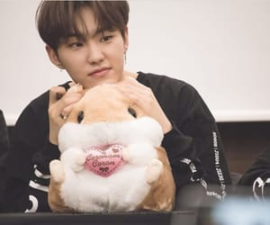 Seventeen, cute, and kwon soonyoung image