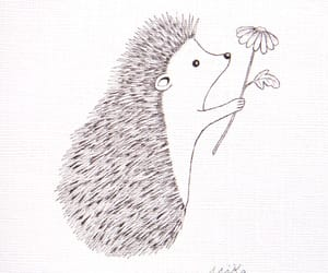 hedgehog, drawing, and flower image