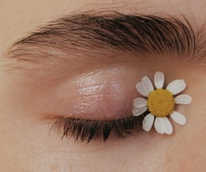 flowers, eye, and aesthetic image