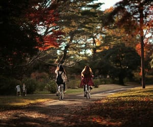 friends and autumn image