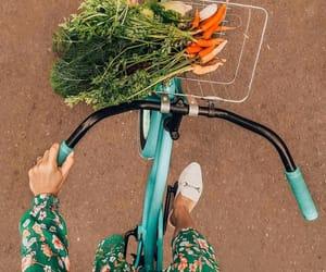 bike, carrots, and vintage image
