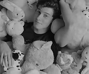 gif, shawn mendes, and singer image