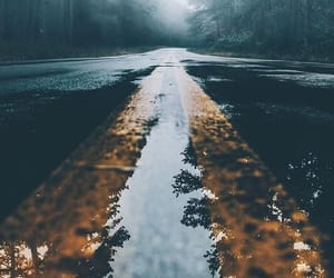 photography, forest, and road image