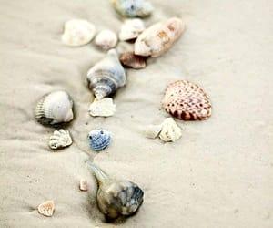 beach and sand image