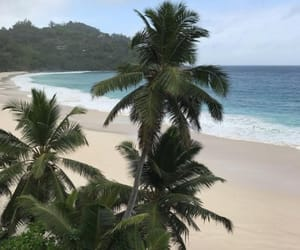 photography, travel, and tropicana image