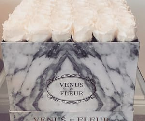 beautiful, boutique, and marble image