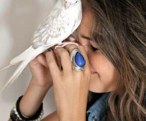 girl, bird, and ring image