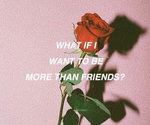 rose, friends, and quotes image