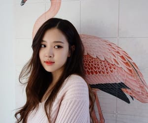 rose, blackpink, and kpop image