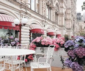 city, places, and flowers image