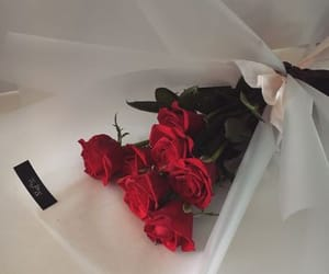 flowers, beautiful, and red roses image
