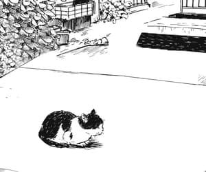 cat and manga image