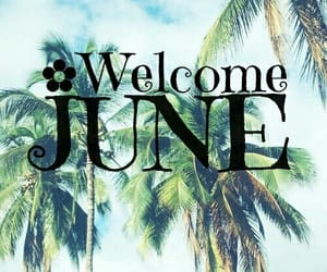 june, summer, and month image