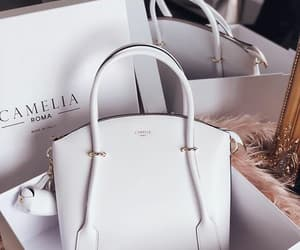 bag, box, and classy image