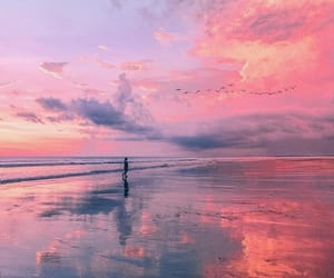nature, beach, and pink image