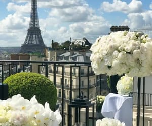 paris, flowers, and theme image