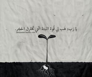 arab quotes, اقتباسات عربية, and عبدالله زيدان image