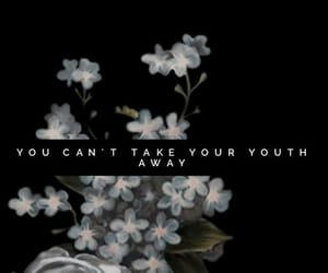 quote, quotes, and shawn mendes image