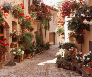 Houses, italy, and streets image