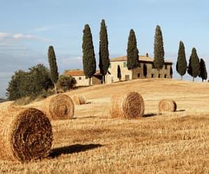 italy, Tuscany, and italia image