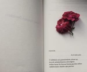 books, poem, and flowers image