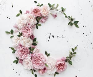 flowers, june, and quotes image