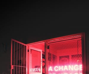 neon, pink, and the 1975 image