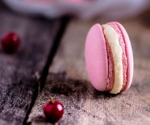 delicious, food, and macaron image