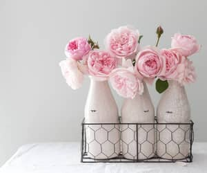 flowers, pink rose, and pink image