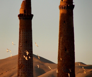Flickrfy » Blog Archive » Herat