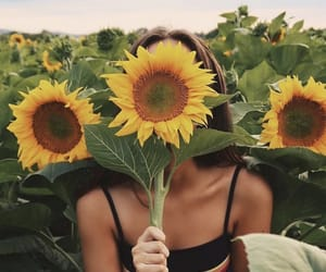 aesthetic, happy, and sunflower image