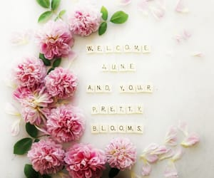 hello, june, and welcome image