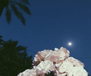 baghdad, Ramadan, and 5am image