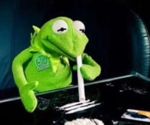 drugs, cocaine, and kermit image