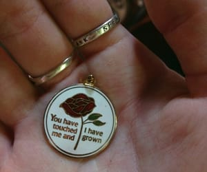 theme, quotes, and rose image