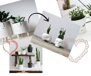 article, vases, and bedrooms image