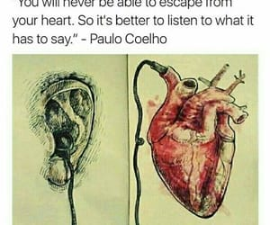 quotes and paulo coelho image