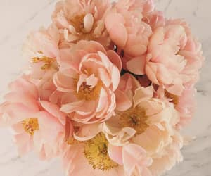 flowers, marble, and rose gold image