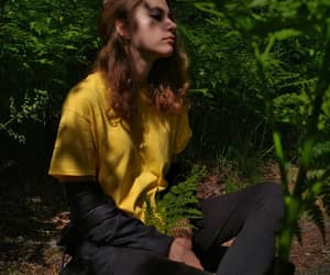 forest, leaves, and yellow image