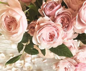 bouquet, pink rose, and flowers image