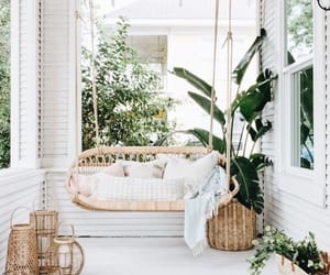 plants, white, and chair image