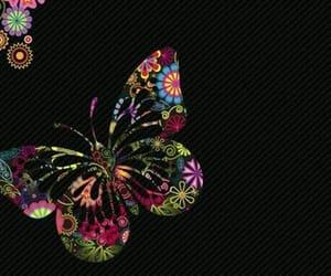 background, borboletas, and mariposa image