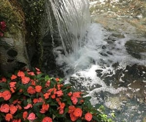 waterfall, nature, and theme image