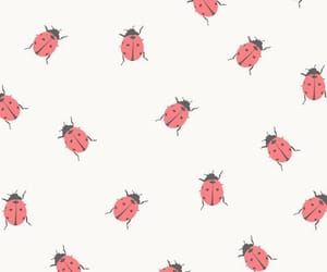 wallpaper, red, and background image