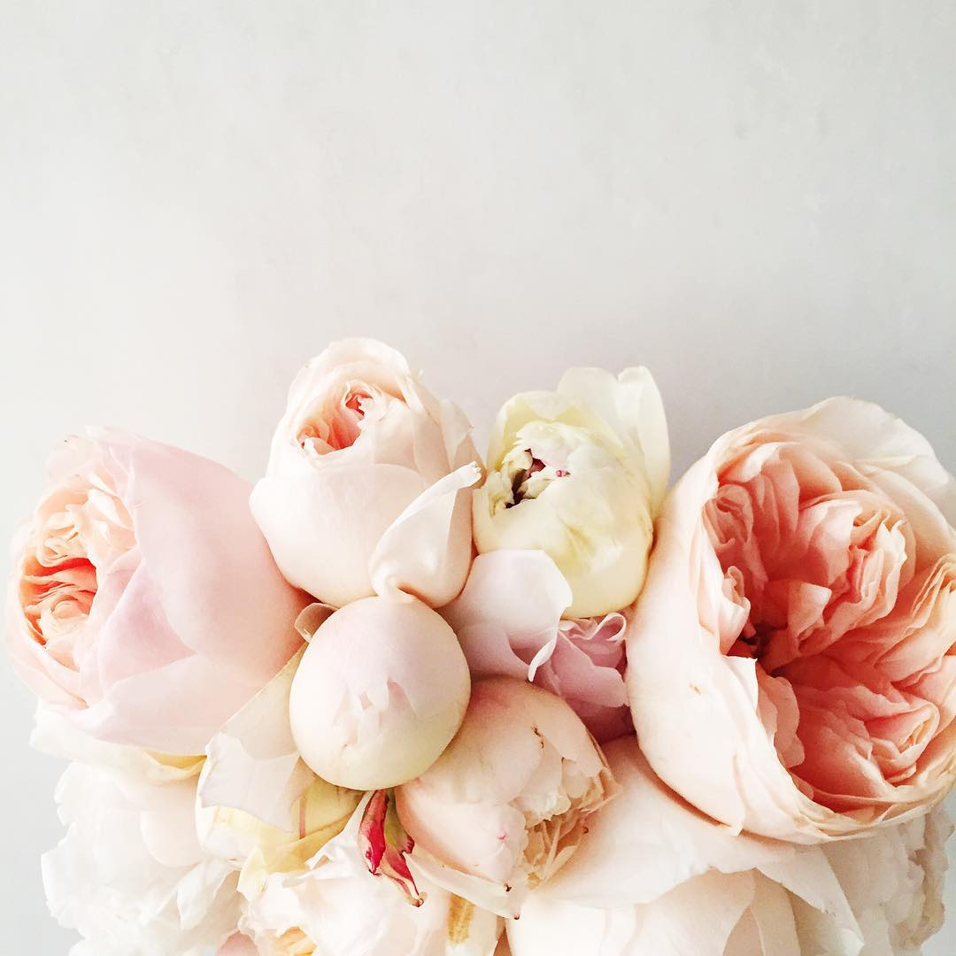bouquet, pink, and peachy roses image